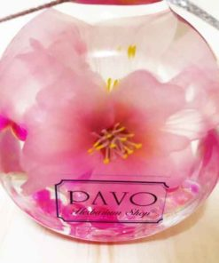 ハーバリウム 桜 Ver. 自宅で さくら お花見 プレゼント にも