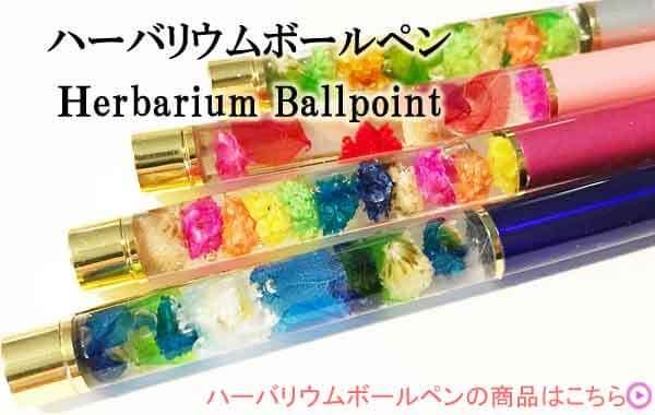 ハーバリウムボールペン カテゴリー ハーバリウムボールペンキットの商品カテゴリー一覧 ハーバリウムペン